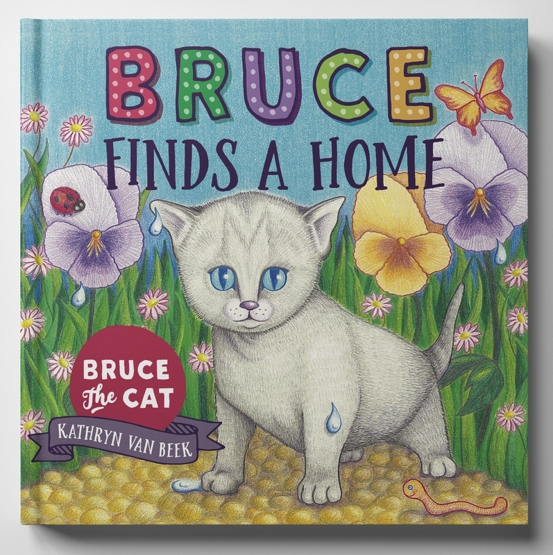 Bruce Finds A Home picture book